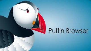 Puffin, il browser superstar, sbarca su Windows
