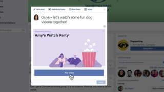 Facebook Video Party